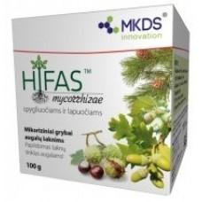 HIFAS - SPYGLIUOČIAMS IR LAPUOČIAMS, MIKORIZINIAI GRYBAI, 100 g