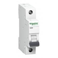 Automatinis išjungiklis SCHNEIDER K60N 1P/B16