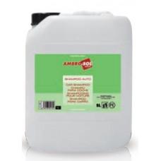 Automobilinis šampūnas 5L AMBRO-SOL