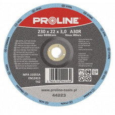 Diskas metalui pjauti T42 125x2,5x22mm A36S PROLINE
